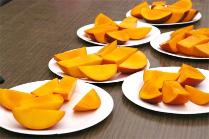 2011年 マンゴー収穫祭
