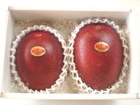 マンゴー2個玉