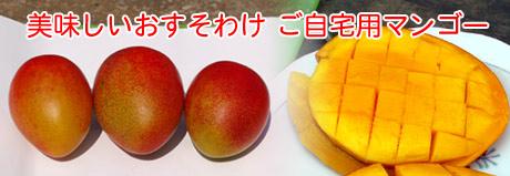 美味しいおすそわけ ご自宅用ぺっぴんマンゴー2個玉