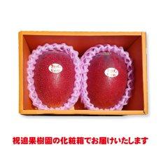 画像2: 産地直送!完熟べっぴんマンゴー 化粧箱入り2個玉 (2)