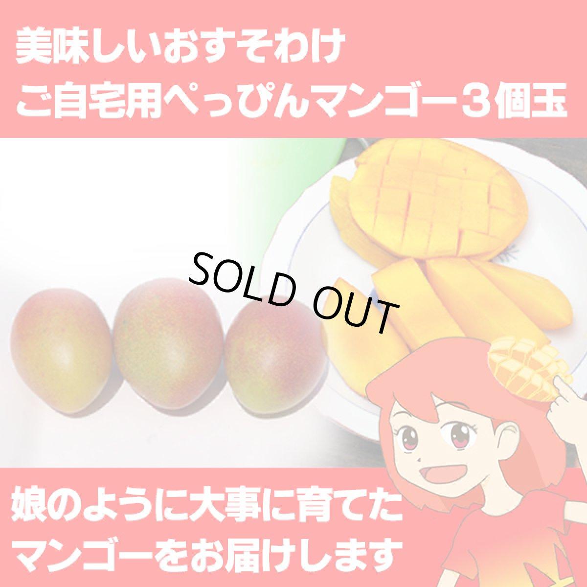 画像1: 美味しいおすそわけ ご自宅用ぺっぴんマンゴー3個玉 (1)