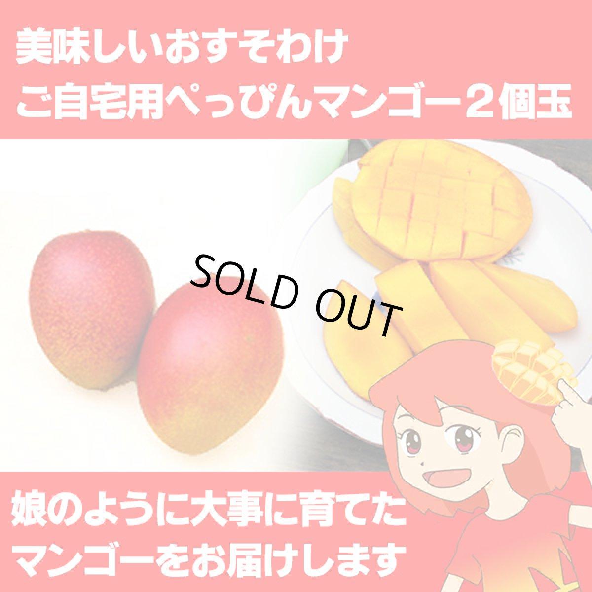 画像1: 美味しいおすそわけ ご自宅用ぺっぴんマンゴー2個玉 (1)