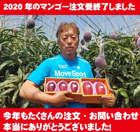 2020年のマンゴーの注文受け付け終了しました。