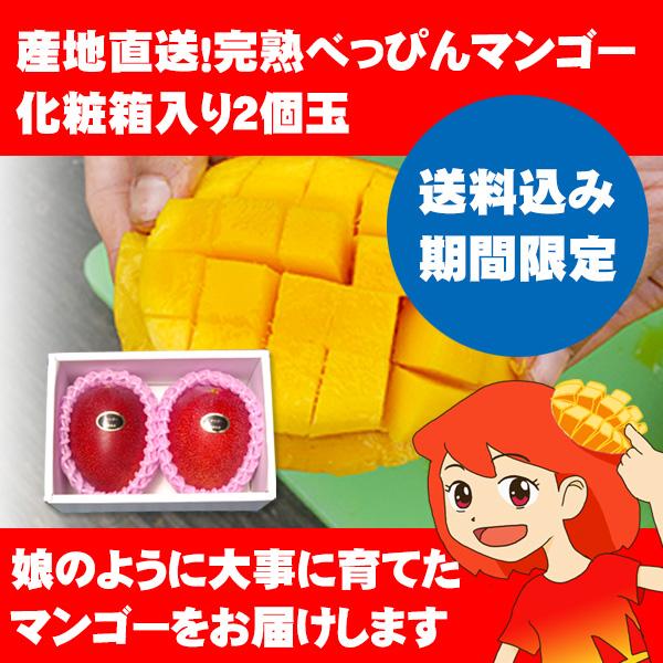 送料込み期間限定 産地直送!完熟べっぴんマンゴー 化粧箱入り2個玉[