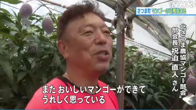 NHK「さつま町でマンゴー収穫始まる 新型コロナが価格に影響か」取材受けさせていただきました。
