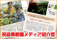https://www.iwaisako-kajyuen.com/page/2