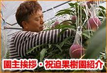 祝迫果樹園の紹介